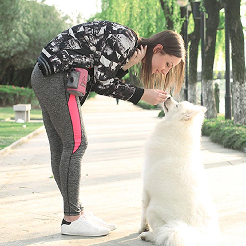 Dog Training Treat Bag MFB23_10