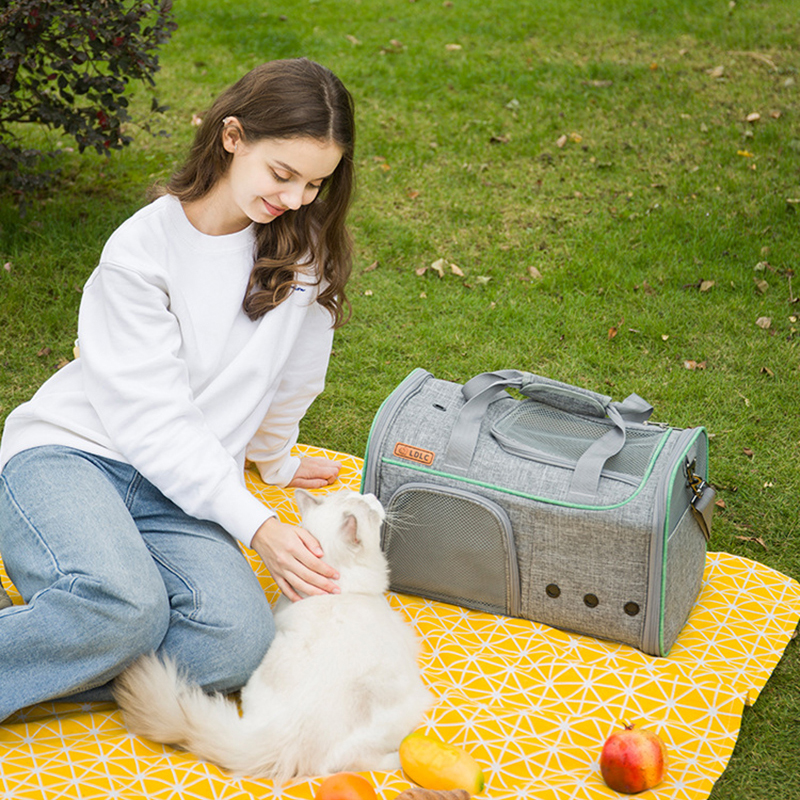 Breathable Leather Pet Handbag With Transparent Side Window MFB53_11