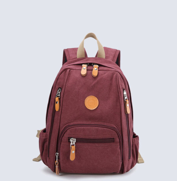 Best Cute Multifunction Traveling Backpacks For Girls And Students MFB02_2